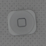 iPhone_5_Home_Button